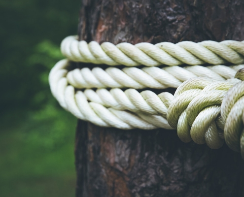 Rope around a tree