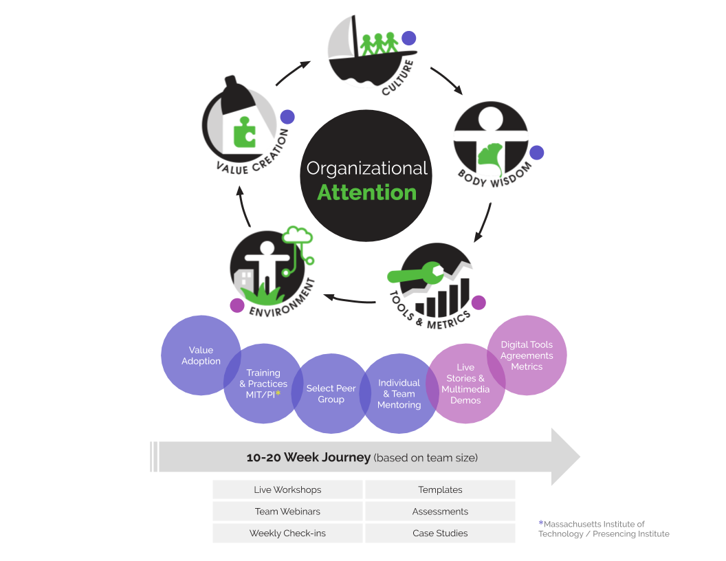 organizational-attention